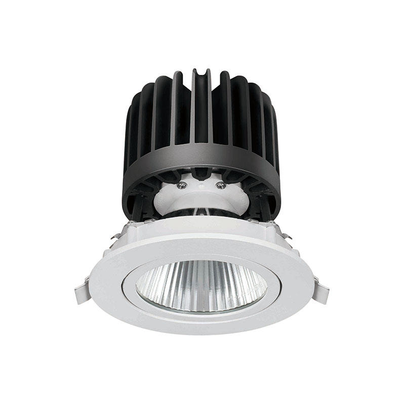 LED down light with adjustable head round led downlights 520016 MAX 30W