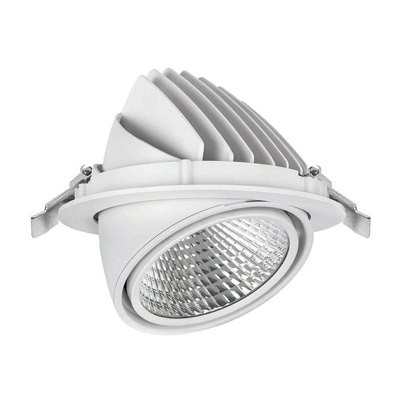 LED down light with flexible head led round downlight 502021-3 MAX 50W